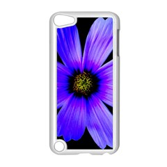 Purple Bloom Apple Ipod Touch 5 Case (white)