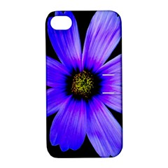 Purple Bloom Apple iPhone 4/4S Hardshell Case with Stand