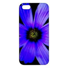 Purple Bloom iPhone 5S Premium Hardshell Case