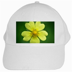 Yellowwildflowerdetail White Baseball Cap