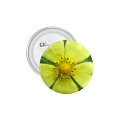 Yellowwildflowerdetail 1.75  Button