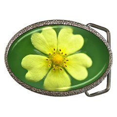 Yellowwildflowerdetail Belt Buckle (Oval)