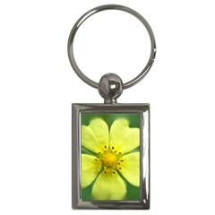 Yellowwildflowerdetail Key Chain (rectangle)