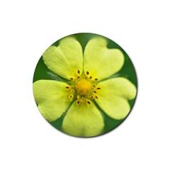 Yellowwildflowerdetail Drink Coaster (round)