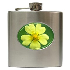 Yellowwildflowerdetail Hip Flask