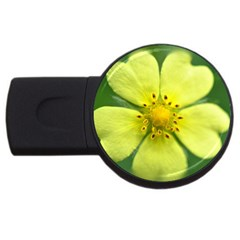 Yellowwildflowerdetail 1GB USB Flash Drive (Round)