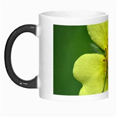 Yellowwildflowerdetail Morph Mug