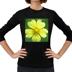 Yellowwildflowerdetail Women s Long Sleeve T-shirt (Dark Colored)