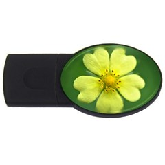 Yellowwildflowerdetail 4GB USB Flash Drive (Oval)