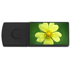 Yellowwildflowerdetail 4gb Usb Flash Drive (rectangle)