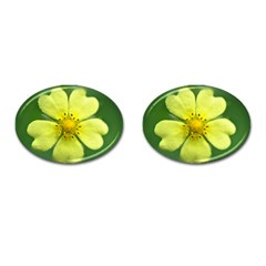Yellowwildflowerdetail Cufflinks (Oval)