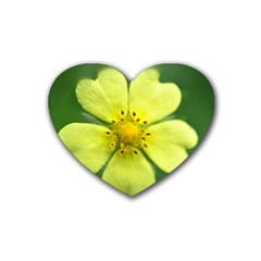 Yellowwildflowerdetail Drink Coasters 4 Pack (heart)