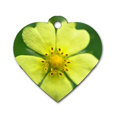 Yellowwildflowerdetail Dog Tag Heart (two Sided)