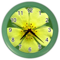 Yellowwildflowerdetail Wall Clock (Color)
