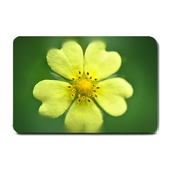 Yellowwildflowerdetail Small Door Mat