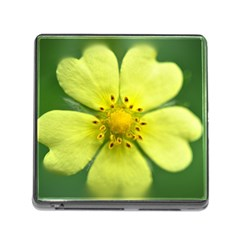 Yellowwildflowerdetail Memory Card Reader With Storage (square)