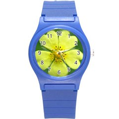 Yellowwildflowerdetail Plastic Sport Watch (Small)