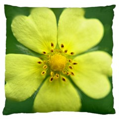 Yellowwildflowerdetail Large Cushion Case (single Sided)