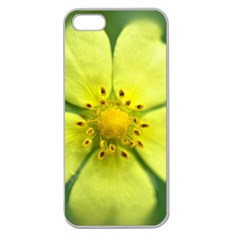 Yellowwildflowerdetail Apple Seamless Iphone 5 Case (clear)