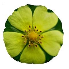 Yellowwildflowerdetail 18  Premium Round Cushion