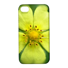 Yellowwildflowerdetail Apple iPhone 4/4S Hardshell Case with Stand