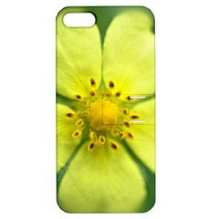 Yellowwildflowerdetail Apple Iphone 5 Hardshell Case With Stand