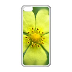 Yellowwildflowerdetail Apple iPhone 5C Seamless Case (White)