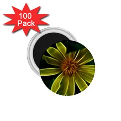Yellow Wildflower Abstract 1.75  Button Magnet (100 pack)