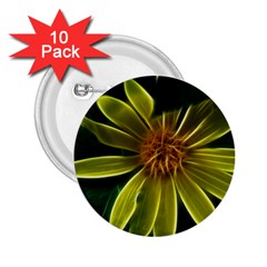 Yellow Wildflower Abstract 2.25  Button (10 pack)