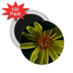 Yellow Wildflower Abstract 2.25  Button Magnet (100 pack)