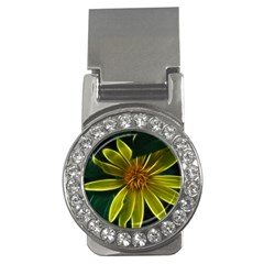 Yellow Wildflower Abstract Money Clip (cz)