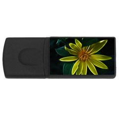 Yellow Wildflower Abstract 2GB USB Flash Drive (Rectangle)
