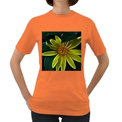 Yellow Wildflower Abstract Women s T Shirt (colored)