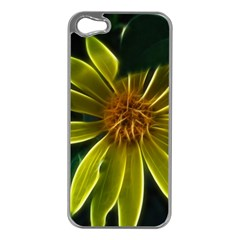 Yellow Wildflower Abstract Apple iPhone 5 Case (Silver)