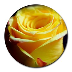 Yellow Rose Curling 8  Mouse Pad (round)