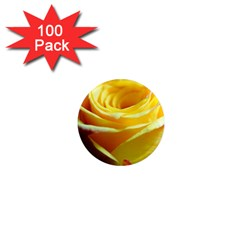 Yellow Rose Curling 1  Mini Button Magnet (100 Pack)