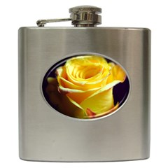 Yellow Rose Curling Hip Flask