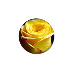 Yellow Rose Curling Golf Ball Marker 4 Pack