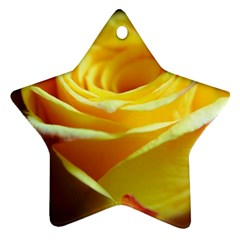Yellow Rose Curling Star Ornament (Two Sides)