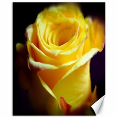 Yellow Rose Curling Canvas 16  X 20  (unframed)