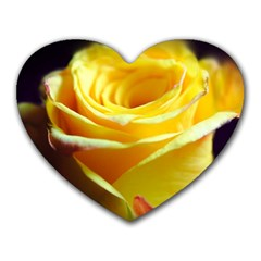 Yellow Rose Curling Mouse Pad (heart)