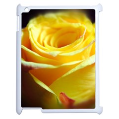 Yellow Rose Curling Apple Ipad 2 Case (white)