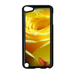 Yellow Rose Curling Apple iPod Touch 5 Case (Black)