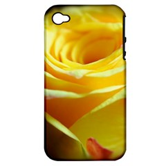 Yellow Rose Curling Apple Iphone 4/4s Hardshell Case (pc+silicone)