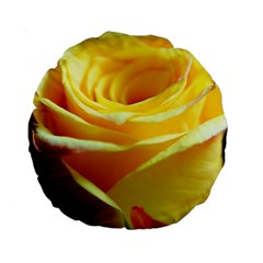 Yellow Rose Curling 15  Premium Round Cushion
