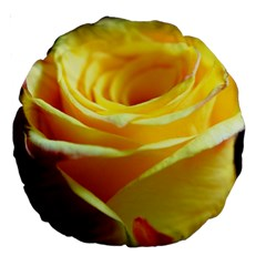 Yellow Rose Curling 18  Premium Round Cushion