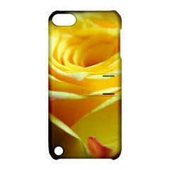 Yellow Rose Curling Apple Ipod Touch 5 Hardshell Case With Stand