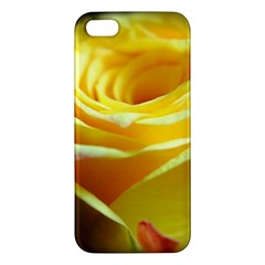Yellow Rose Curling iPhone 5S Premium Hardshell Case