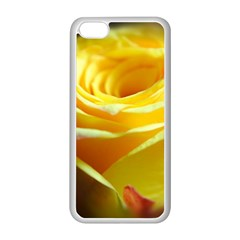 Yellow Rose Curling Apple Iphone 5c Seamless Case (white)