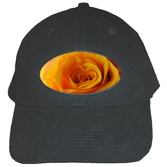 Yellow Rose Close Up Black Baseball Cap
